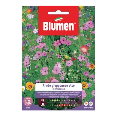 Seme fiore PRATO GIAPPONESE ALTO nan20 g