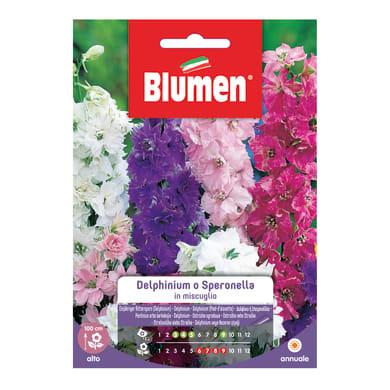 Seme fiore DELPHINIUM O SPERONELLA nan20 g