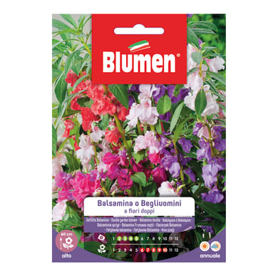 Seme fiore BALSAMINA O BEGLI UOMINI nan20 g