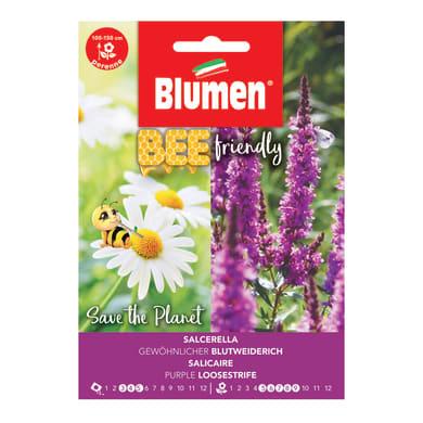 Seme fiore BEE FRIENDLY SALCERELLA nan20 g