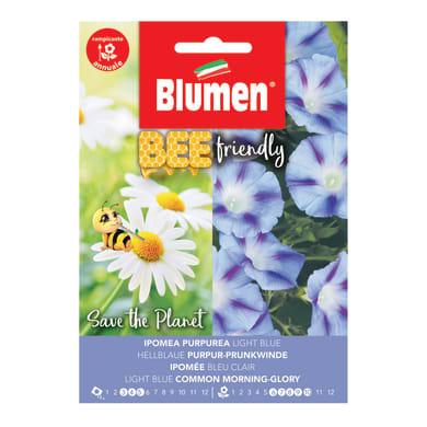 Seme fiore BEE FRIENDLY IPOMEA PURPUREA nan20 g