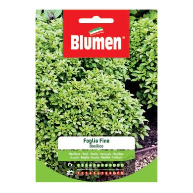 Seme per orto basilico a foglia fine - ocimum basilicum l. - normativa ce - cat. commerciale - germ. 65% - pur. 97%