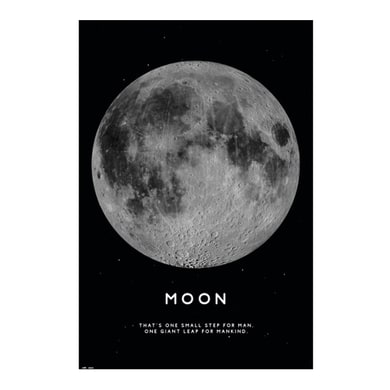Poster Moon 61x91.5 cm