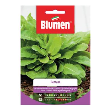 Seme per orto acetosa - rumex acetosa l. - cat. commerciale - germ. 80%, pur. 95%