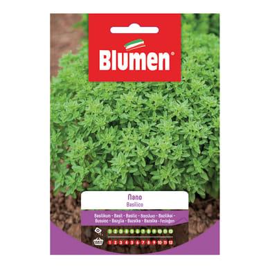 Seme per orto basilico nano - ocimum basilicum l. - cat. commerciale - germ. 65%, pur. 97%