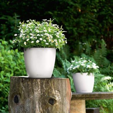 Vaso Classico Color LECHUZA in polipropilene colore bianco H 26 cm, Ø 28 cm