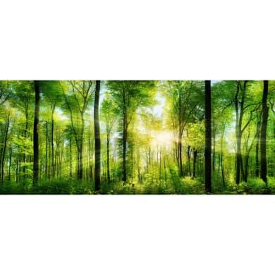 Quadro in vetro Green Beauty 120x50 cm