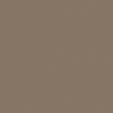 Vernice 0.59 L mississipi mud