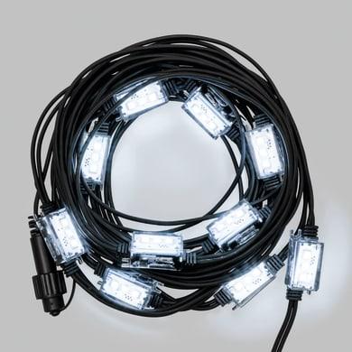 Catena luminosa 10 lampadine LED bianco freddo Strobo 1 m