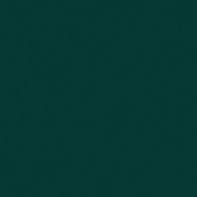Vernice 0.59 L paynes grey