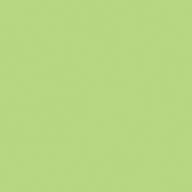Vernice 0.59 L pistachio mint