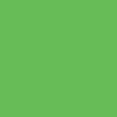 Vernice 0.59 L sour apple