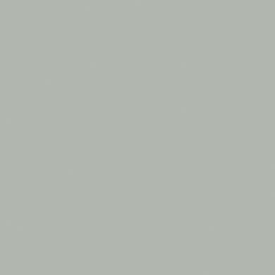 Vernice 0.59 L argento