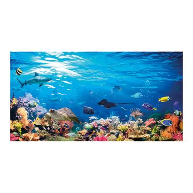 Quadro su tela Reef 145x75 cm