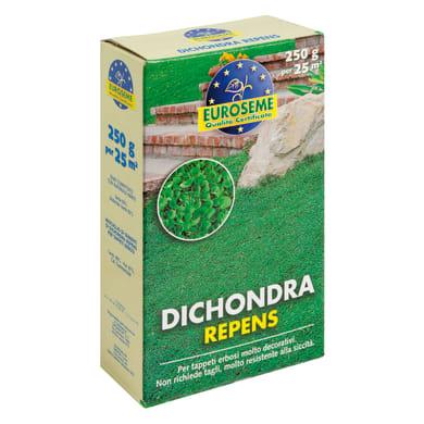 Seme per prato EUROSEME Dichondra repens 0.25 kg