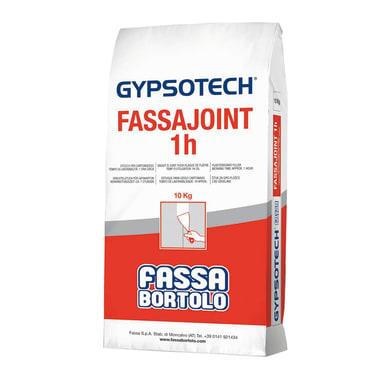 Stucco in polvere FASSA BORTOLO Fassajoint 1H 10 kg