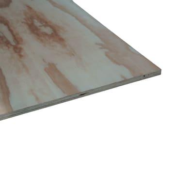 Pannello compensato pino L 244 x H 122 cm Sp 15 mm
