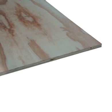 Pannello compensato pino L 244 x H 122 cm Sp 18 mm