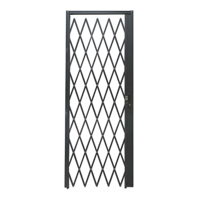 Cancelletto blindato DibiBlind 80 x 220 cm grigio / argento