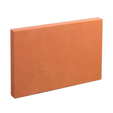 Mattone faccia a vista in terracotta Tavella Refrattaria Rossa 30x20x3 H 20 x L 30 x P 3 cm