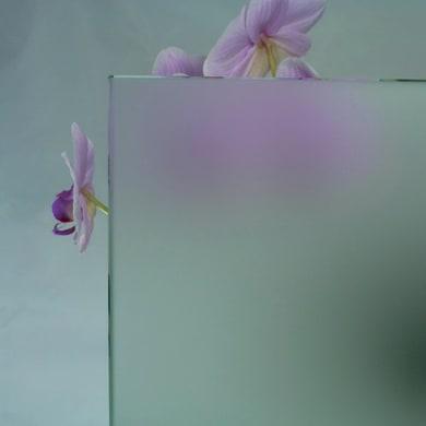 Vetro trasparente L 160.5 x H 100 cm, Sp 4 mm