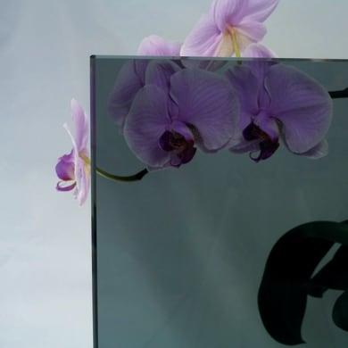 Vetro trasparente L 160.5 x H 150 cm, Sp 4 mm