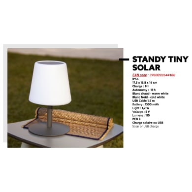 Lampada solare STANDY SOLAR , in acciaio, luce regolazione da bianco caldo a bianco freddo, 110LM IP44 BATIMEX