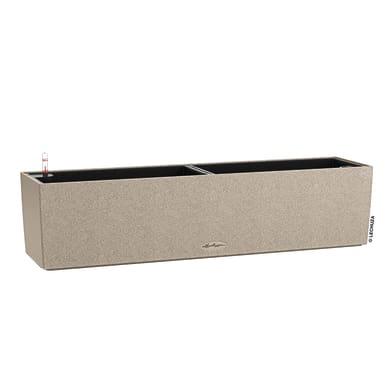 Cassetta portafiori Balconera Stone 80 - Beige Sabbia LECHUZA in plastica colore beige H 19 cm, L 19 x P 19 cm