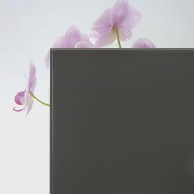 Vetro extrachiaro acidato verniciato grigio scuro Sp 12 mm