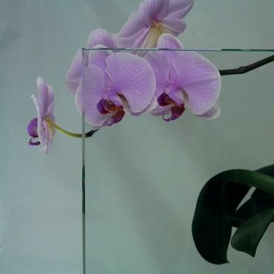 Vetro float trasparente Sp 6 mm