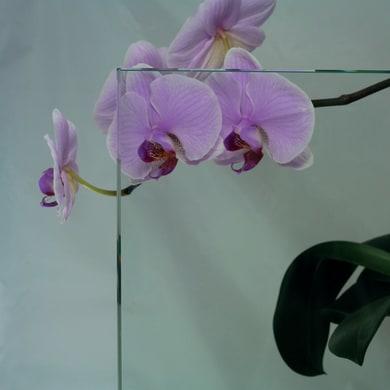 Vetro float trasparente Sp 8 mm