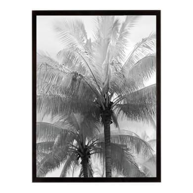 Stampa incorniciata Kerala focus 30.7x40.7 cm