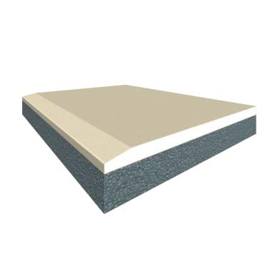Lastra cartongesso FASSA BORTOLO Duplex 200 x 90 cm, Sp 30 mm