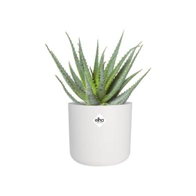 Portavaso b.for soft rond ELHO in polipropilene colore bianco H 15 cm, P 16 cm Ø 16 cm