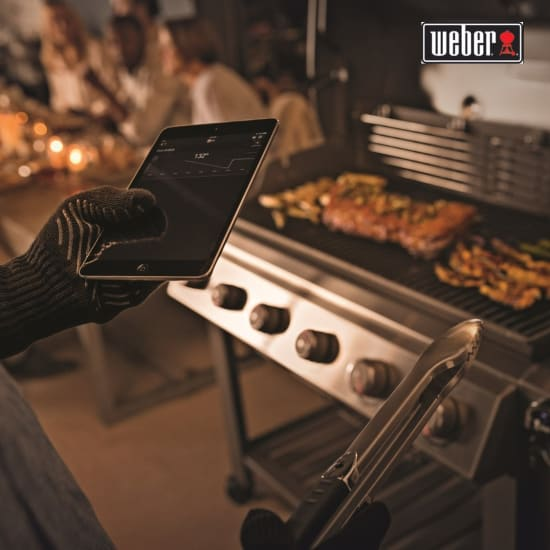 Barbecue WEBER e accessori