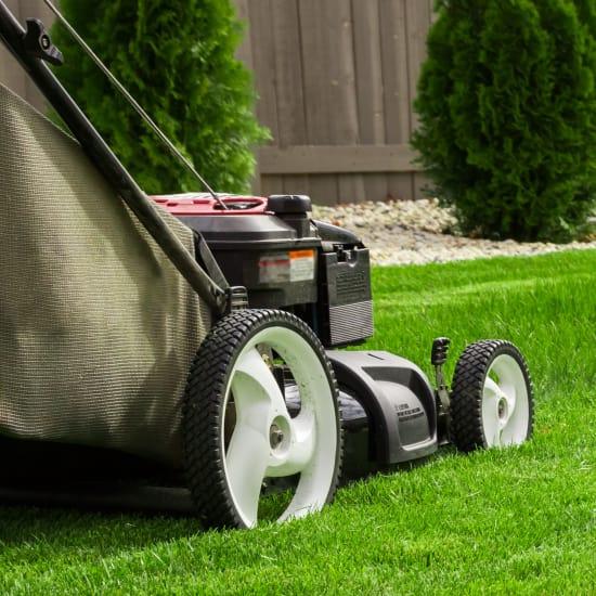 Arredo giardino terrazzo e giardinaggio offerte e prezzi for Offerte giardino