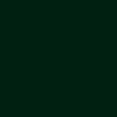 Smalto per ferro antiruggine Alkyton verde RAL 6005 satinato 0,75 L