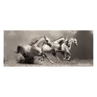 Quadro in vetro Wild horses 125x50