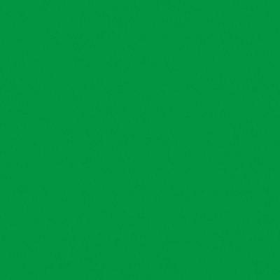 Smalto Geckos all'acqua verde brillante 2.5 L