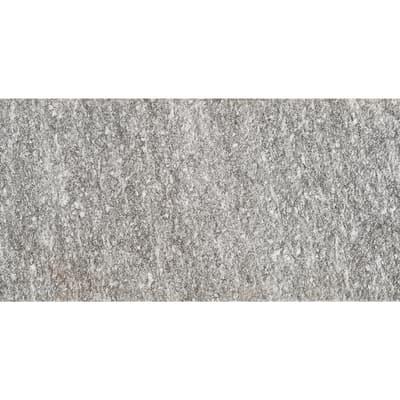 Piastrella Serizzo 20 x 40 cm grigio