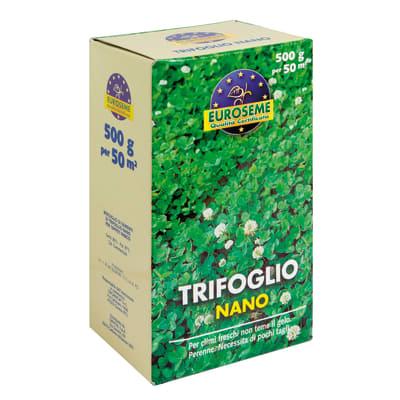 Semi per prato Trifoglio Nano 0,5 kg