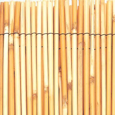 Arella Reedcane naturale L 5 x H 2 m