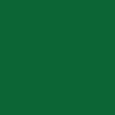 Colorante universale Luxens verde bosco 250 ml