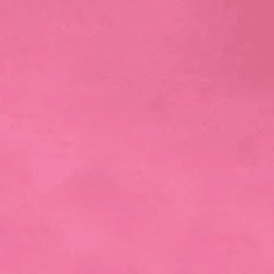 Pasta modellabile You Clay! rosa petal pink 56 g