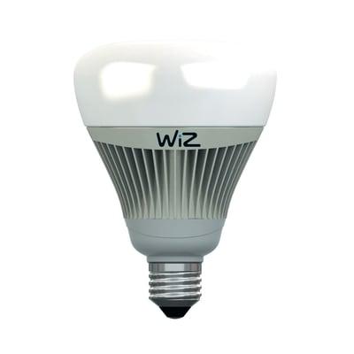 Lampadina LED E27, Globo, Argentato, Colore cangiante, RGB, 15W=1055LM (equiv 75 W), 360° , WIZ