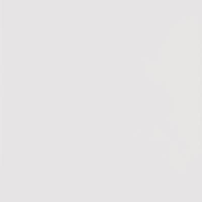 Piastrella Granito H 30 x L 60 cm PEI 3/5 bianco