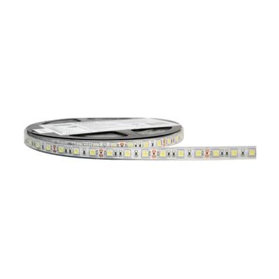 Striscia led Striscia LED Bianco 5m luce bianco freddo 3400LM IP68
