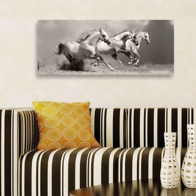 Quadro in vetro Wild Horses 125x50 cm