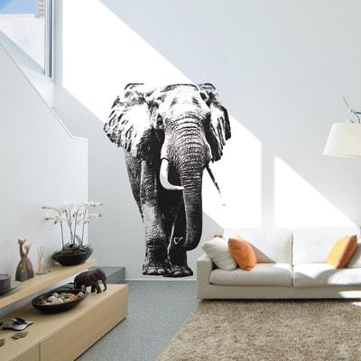 Sticker Elephant 9x106 cm