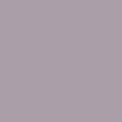 Pittura murale FLEUR 2.5 L viola